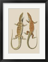 Framed Antique Lizards I