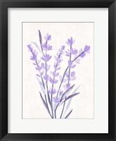 Framed Lavender Land I