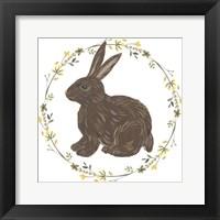 Happy Bunny Day II Framed Print