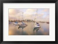 Framed Calm In Reflection San Diego