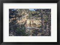 Framed Pines and Coast Point Lobos