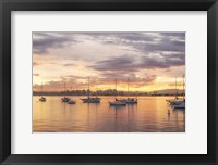 Framed Magical Morning Hues In San Diego