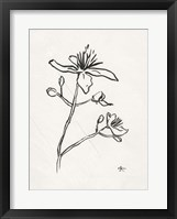 Framed Floral Ink Study II