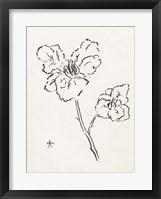 Framed Floral Ink Study III