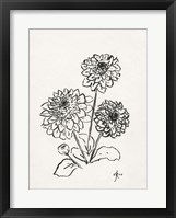 Framed Floral Ink Study V