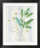 Framed Floursack Herbs III