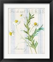 Framed Floursack Herbs I