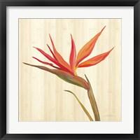 Framed Tropical Garden IV
