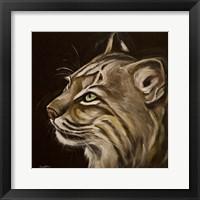 Framed Bobcat