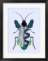 Framed Beetle