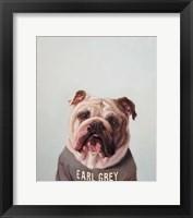 Framed Earl Gray