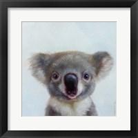 Framed Lil Koala