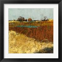 Framed Fields