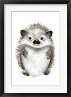 Little Hedgehog Framed Print
