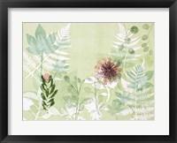 Framed Myriad Celebration of Plants