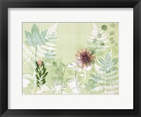 Framed Myriad Celebration of Plants