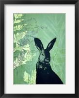 Framed Cheeky Rabbit