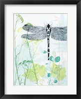 Framed Dragonfly And The Healing Plant