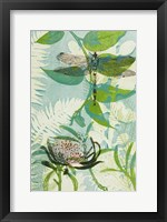 Framed Elusive Dragonfly and Waratah