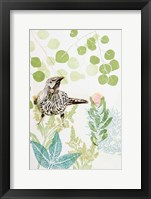 Framed Wattlebird and Pincushion Protea