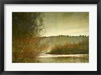 Framed Marymoor Moment