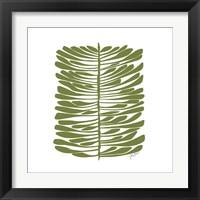 Framed Hawaiian Pine