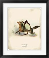 Framed Foxfly