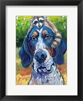 Framed Coonhound