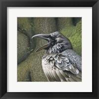 Framed Raven Earth