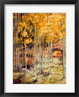 Framed Fall Aspen