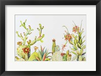 Framed Cactus Clan