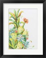 Framed Fruits of the Desert