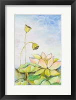 Framed Rising Lotus