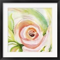 Framed In Full Bloom