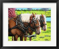 Framed Clydesdales in the Meadow