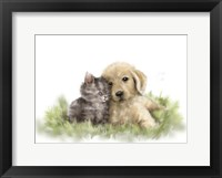 Framed Dog and Cat 1