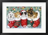 Framed Cats in Stockings