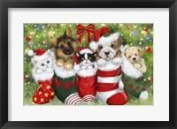 Framed Dogs in Stockings