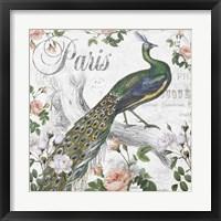 Framed Paris Peacock