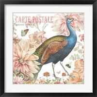 Framed Garden Peacock