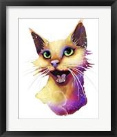 Framed Pets- Alley Cat