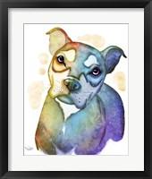 Framed Pets- Nick the Dog