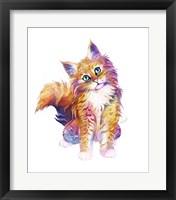 Framed Pets- Orange Kitten