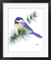 Framed Songbirds- Chicadee and Evergreen
