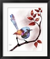Framed Songbirds- Fairywren Red Leaves
