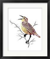 Framed Songbirds- Meadowlark