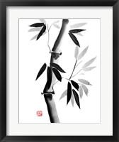 Framed Bamboo 2