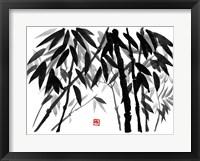 Framed Bamboo 3