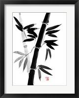 Framed Bamboo 4