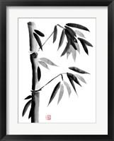 Framed Bamboo 5